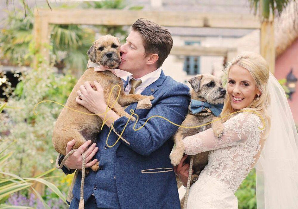 LPC Bride & Groom holding dogs